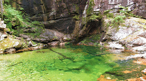 Sabbaday Falls Lower Pool, Sabbaday Waterfall, White Mountains, Waterville Valley, NH, New Hampshire
