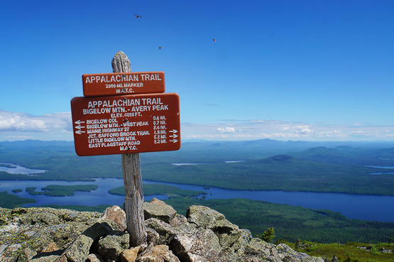summit sign photo mount bigelow avery peak