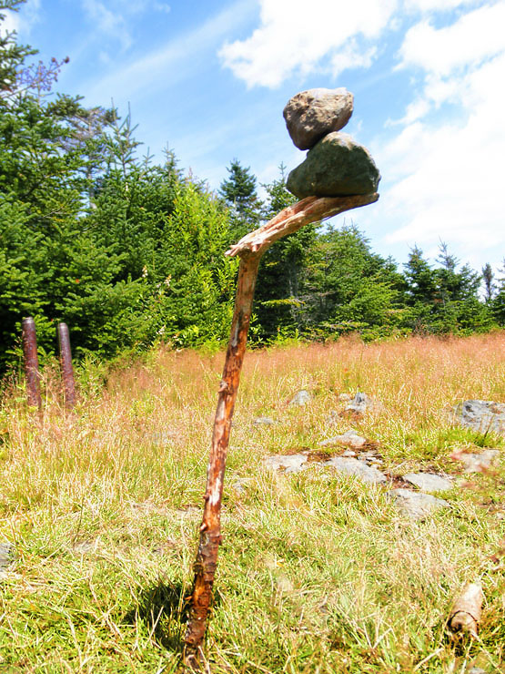 summit field on hale mountain, mount hale hiking 4000 footers nh, hale brook trail