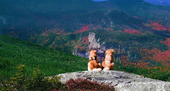 Twin Mountain Nh >> Mount Jackson Mt Jackson 4 052 4052 Feet Twin Mountain