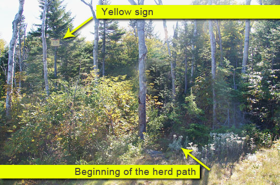 yellow sign herd path scar ridge loon mountain