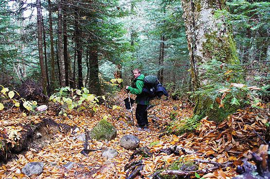 Twin Mountain Nh >> South Twin Mountain Hiking Twin Mountain North 4000 Footers