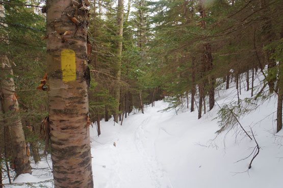 winter mount tecumseh, mt tecumseh view hiking nh new hampshire